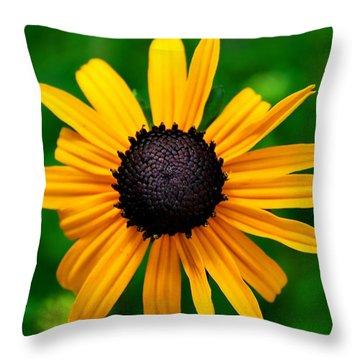 Golden Flower Throw Pillow by Matt Harang