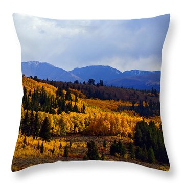 Golden Fourteeners Throw Pillow