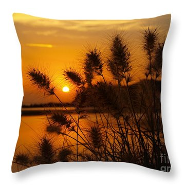 Throw Pillow featuring the photograph Golden Glow by Trena Mara