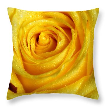 Golden Grandeur Of Nature. Yellow Rose I Throw Pillow by Jenny Rainbow