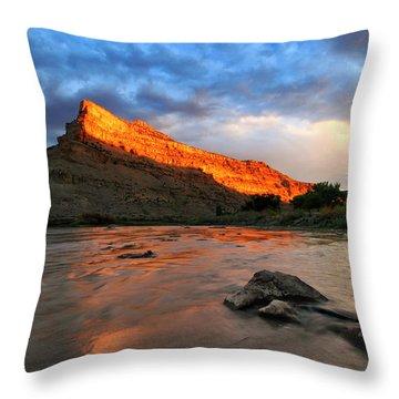 Throw Pillow featuring the photograph Golden Highlights by Ronda Kimbrow