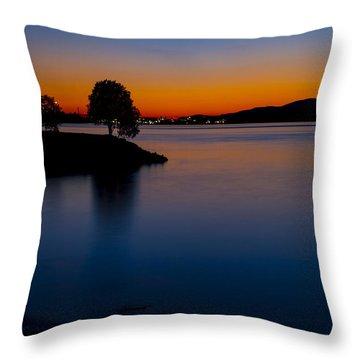 Golden Horizon Throw Pillow