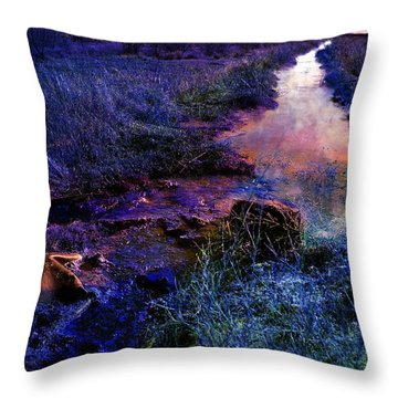 Throw Pillow featuring the photograph Golden Hour by Gunter Nezhoda