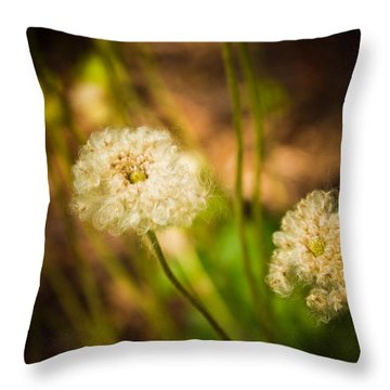Throw Pillow featuring the photograph Golden Hour by Sara Frank