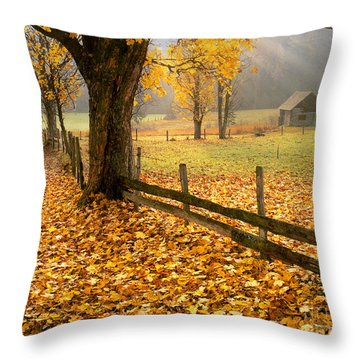 Golden Hours Throw Pillow
