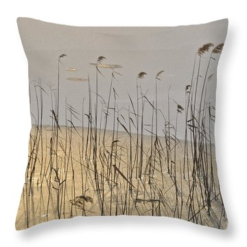 Golden Ice Throw Pillow