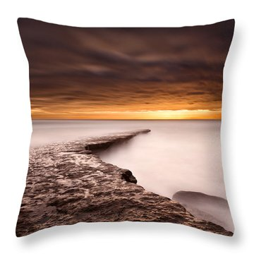 Golden Throw Pillow by Jorge Maia