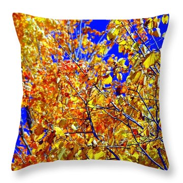 Golden Throw Pillow by Kathleen Struckle