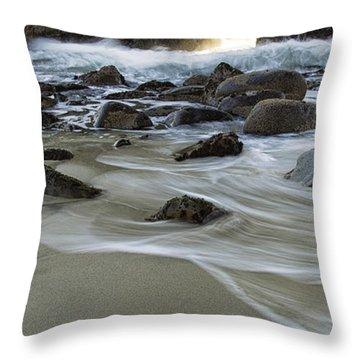Golden Key Throw Pillow by Michele Steffey