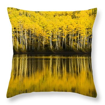 Golden Lake Throw Pillow