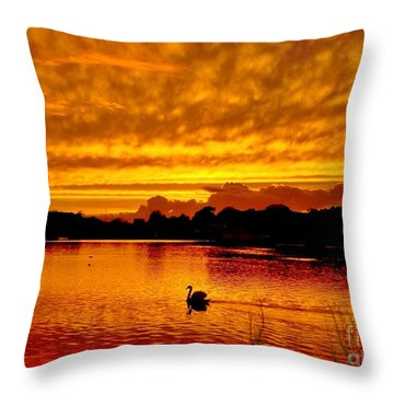 Throw Pillow featuring the photograph Golden Lake by Katy Mei