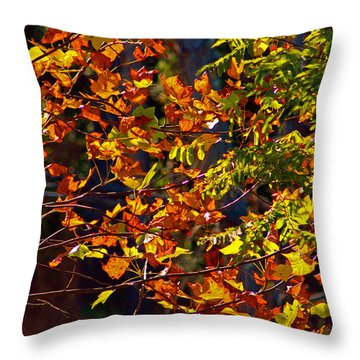 Golden Leaves On A Fall Afternoon Throw Pillow by Andy Lawless