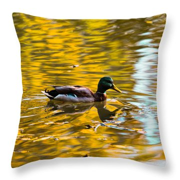Golden   Leif Sohlman Throw Pillow