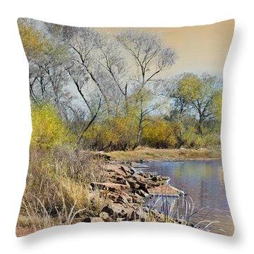 Golden Light Throw Pillow by Betty LaRue