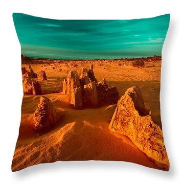 Golden Light Falls Throw Pillow