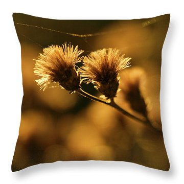 Golden Light Throw Pillow by Jane Eleanor Nicholas