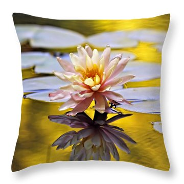 Golden Light Throw Pillow by Katherine White