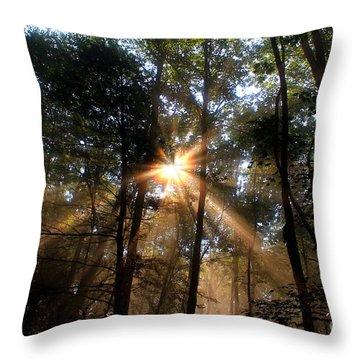 Golden Light Throw Pillow by Melissa Petrey