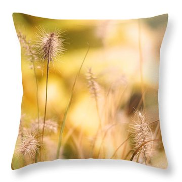 Golden Light Of Autumn Throw Pillow