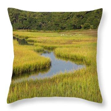 Golden Marsh Throw Pillow by Patricia Schaefer
