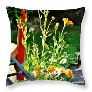 Throw Pillow featuring the photograph Golden Moment by VLee Watson
