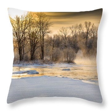 Golden Morning Throw Pillow