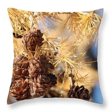 Golden Needles Throw Pillow