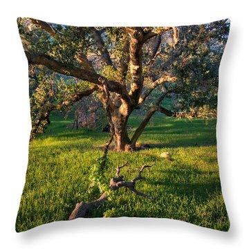 Golden Oak Throw Pillow