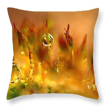 Golden Palette Throw Pillow