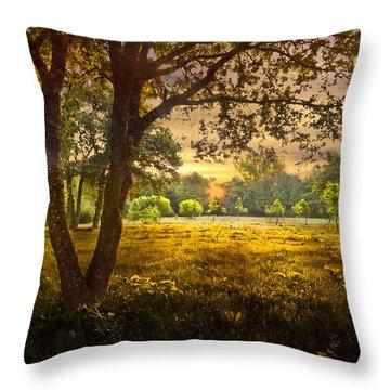 Golden Pastures Throw Pillow by Debra and Dave Vanderlaan