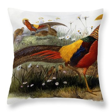 Golden Pheasants Throw Pillow by Joseph Wolf