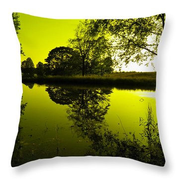 Golden Pond Throw Pillow by Nick Kirby