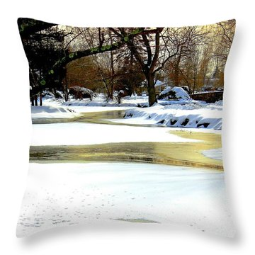 Golden Pond Reflections Throw Pillow by Judy Palkimas