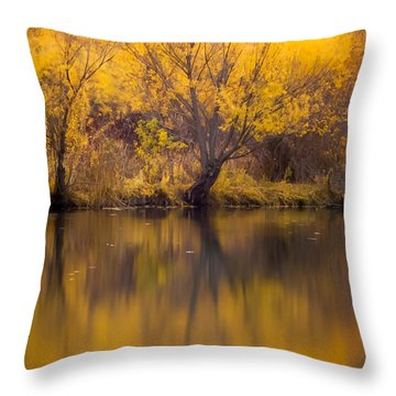 Throw Pillow featuring the photograph Golden Pond by Steven Milner