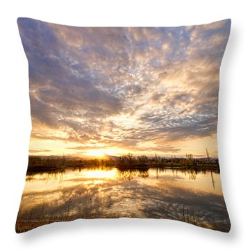 Golden Ponds Scenic Sunset Reflections Throw Pillow by James BO  Insogna