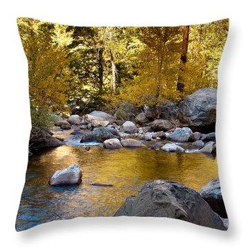 Golden Pool On Roaring River  1-7797 Throw Pillow