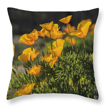 Golden Poppies Throw Pillow