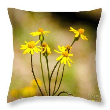 Golden Ragwort Throw Pillow
