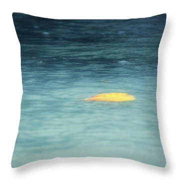 Golden Reflections Throw Pillow by Melanie Lankford Photography