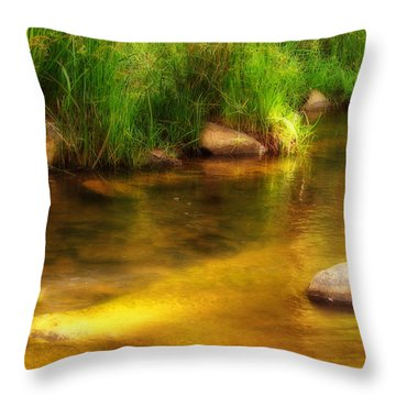 Golden Reflections Throw Pillow by Michelle Wrighton
