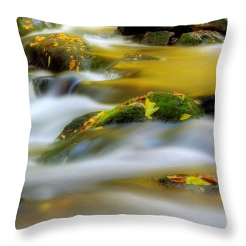 Throw Pillow featuring the photograph Golden Reflections Of Fall by Greg Mimbs
