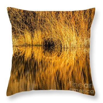 Golden Reflections Throw Pillow