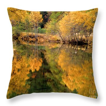 Golden Reflections Throw Pillow