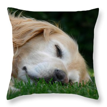 Golden Retriever Dog Sweet Dreams Throw Pillow
