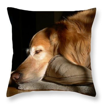 Golden Retriever Dog With Master's Slipper Throw Pillow by Jennie Marie Schell