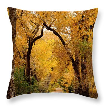 Throw Pillow featuring the photograph Golden Roads by Steven Reed