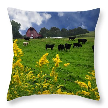 Golden Rod Black Angus Cattle  Throw Pillow