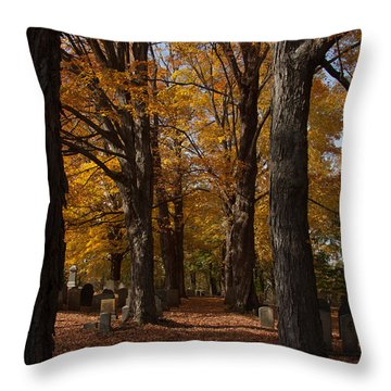 Throw Pillow featuring the photograph Golden Rows Of Maples Guide The Way by Jeff Folger