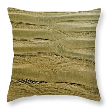 Throw Pillow featuring the photograph Golden Sand 5 by Julis Simo