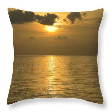 Golden Sea Throw Pillow